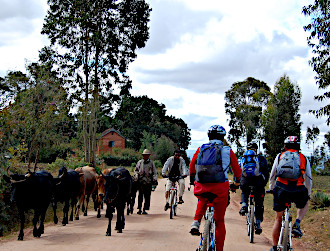 Bicycling tours in Madagascar
