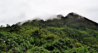 Trekking at Marojejy in the North East of Madagascar