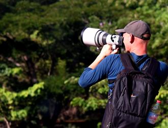 Birdwatching and birding tours in Madagascar