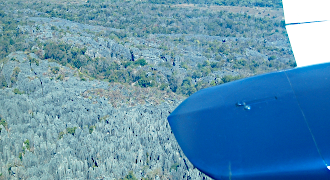 Tsingy de Bemaraha overfly and short tours