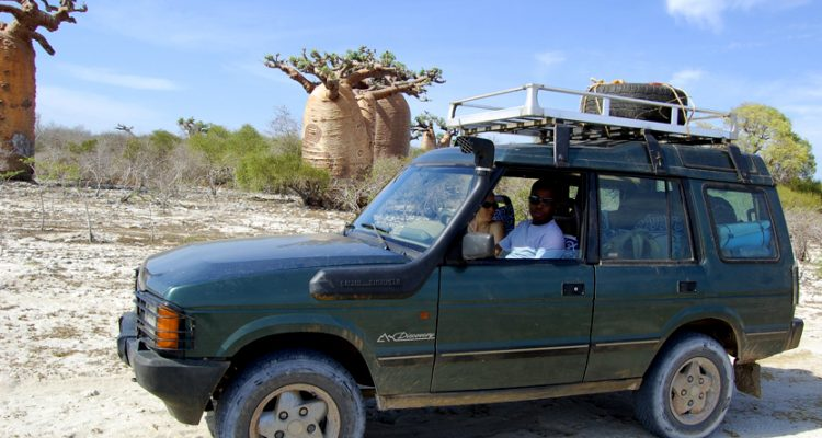 Baobab safari adventure tours