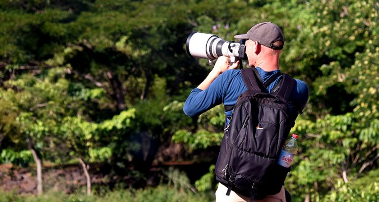 Photography tours and birdwatching in madagascar