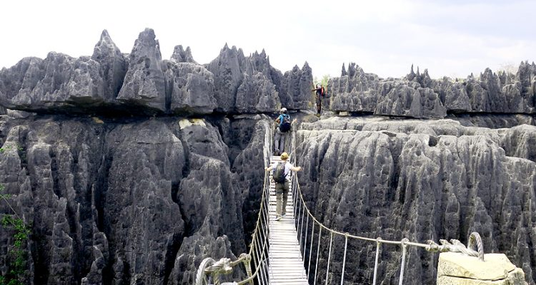 Tsingy de Bemaraha expedition and tours